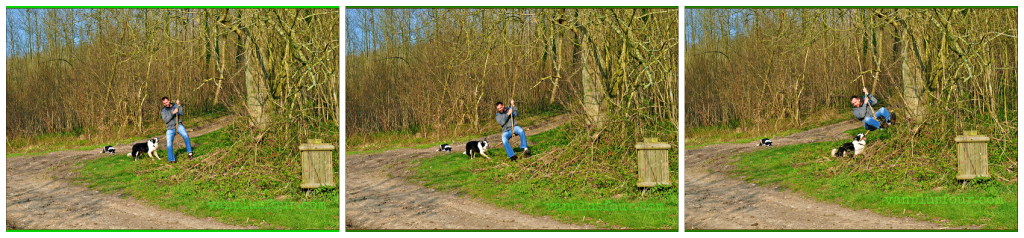 dog walk in Nord Pas de Calais