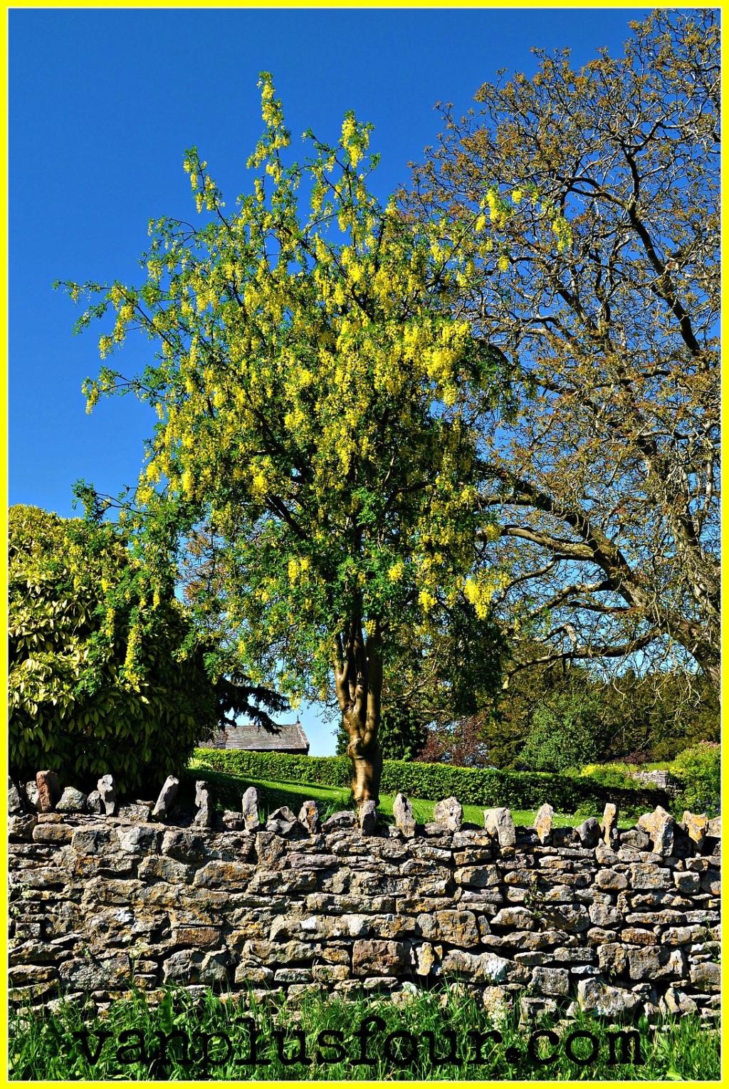 Morland in Cumbria