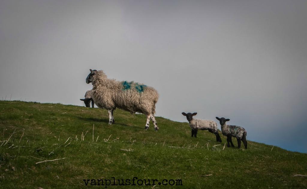Dowall Hall Farm, Peak District, England