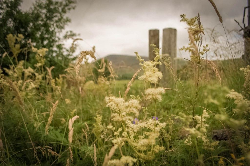 Waterside Farm, Edale Valley, Peak District, UK