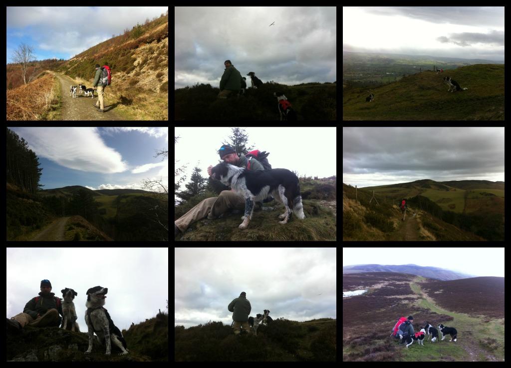 glider, Moel Arthur, Clwydian Range, North Wales, UK